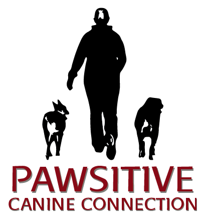 Pawsitive Connection Dog Training Services